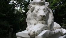 cemetery lion