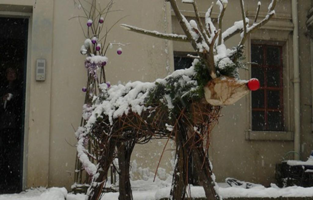 AbneyPark reindeer